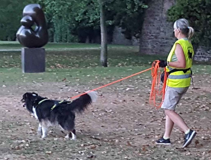 Mantrailing und Sicherheitsweste von Rasselhunde
