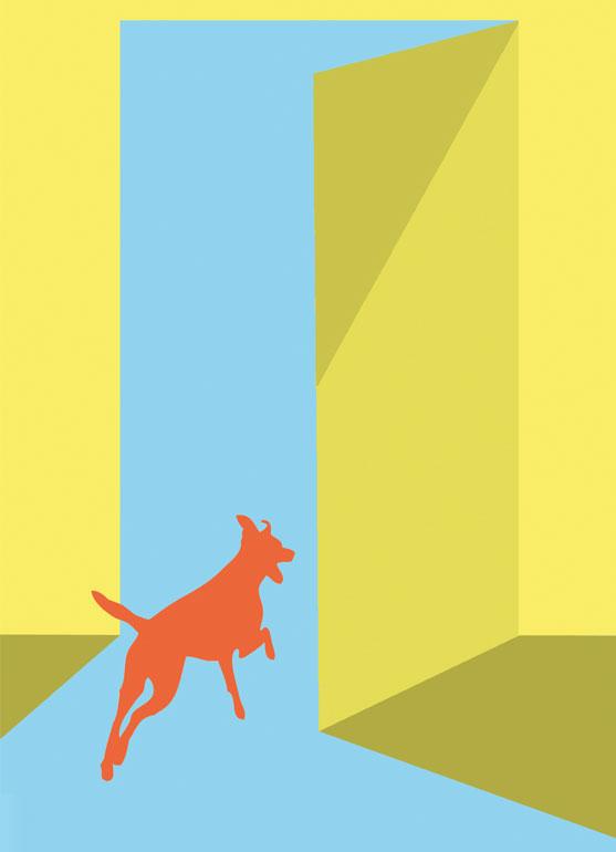 Öffnungszeiten Rasselhunde Barf Shop – Maßschneiderei für Hunde,